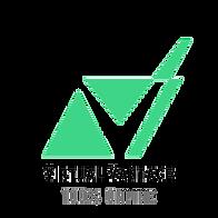 Virtual Vantage Course--100% Online