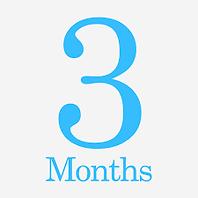 A 3 Month TEFL Plan