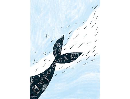 cacciando balene