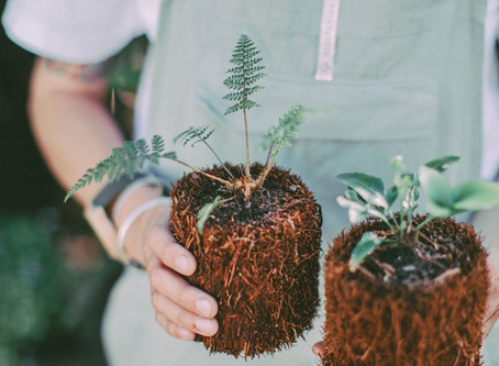 Native Plant Stylists - HapPea Events