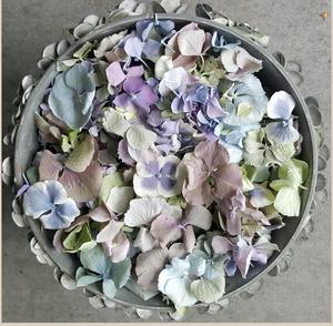 Church Confetti Hydrangea Petals
