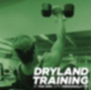 dryland_c3.jpg
