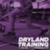 dryland_c2.jpg