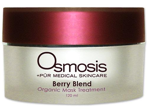 Berry Blend Organic Mask
