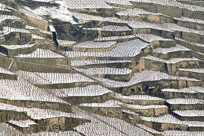 Mosel, Weinanbau in Terrassen, Winterimpressionen