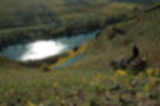 Mosel, Steilhang-Bewirtschaftung mit der Mono-Rak-Bahn