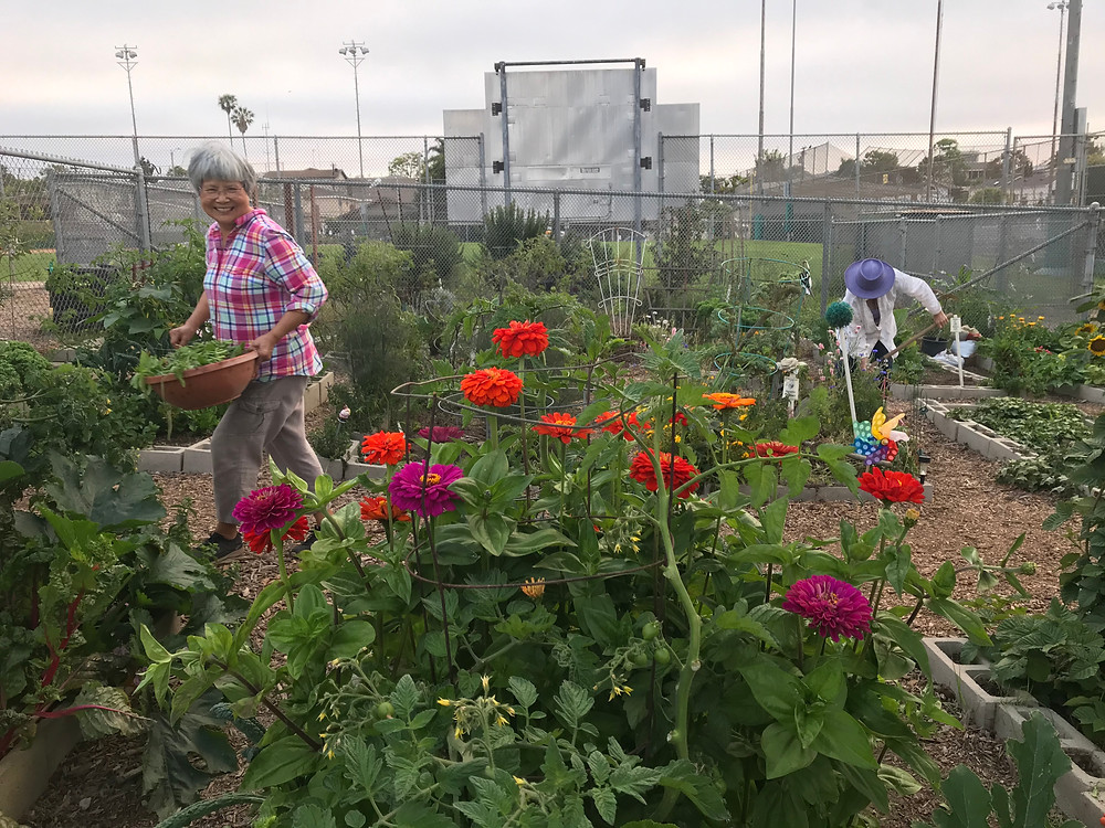 Two women work in the community garden amidst bright, colorful flowers and lush, green foliage