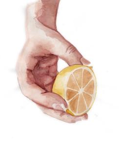 15 lemon.jpg