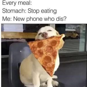 Picture 4 Dog with Pizza