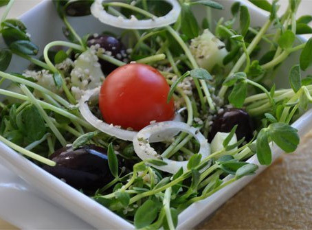 Why Raw Sprouts Can Be Riskier Than Raw Hamburger