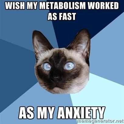 catmetabolism