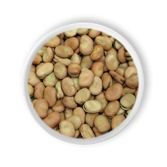 Broad Beans.png