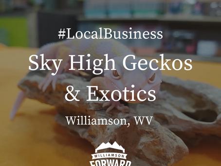 #LocalBusiness: Sky High Geckos & Exotics