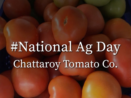 National Ag Day: Spotlight on Chattaroy Tomato Co.