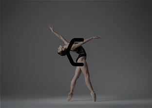 Danza Identity 07.png