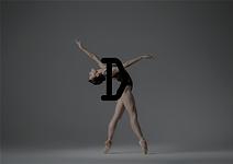 Danza Identity 06.png