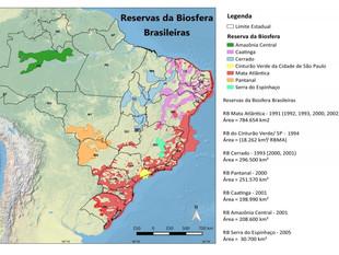 Unesco mantém título de Reserva da Biosfera ao Pantanal