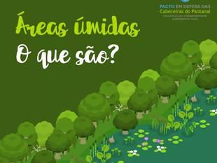 2 de fevereiro - Dia Internacional das Áreas Úmidas. Você sabe o que são?
