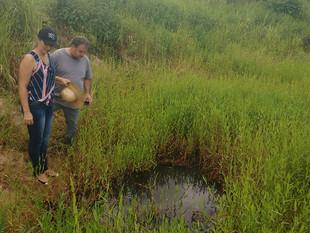Produtores adotam medidas sustentáveis para conservar água do Pantanal