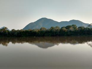"""Jornal """"The Guardian"""" publica matéria especial sobre o Pantanal"""