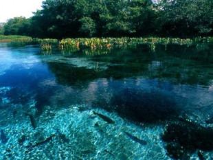 Brasil é finalista em prêmio de turismo sustentável