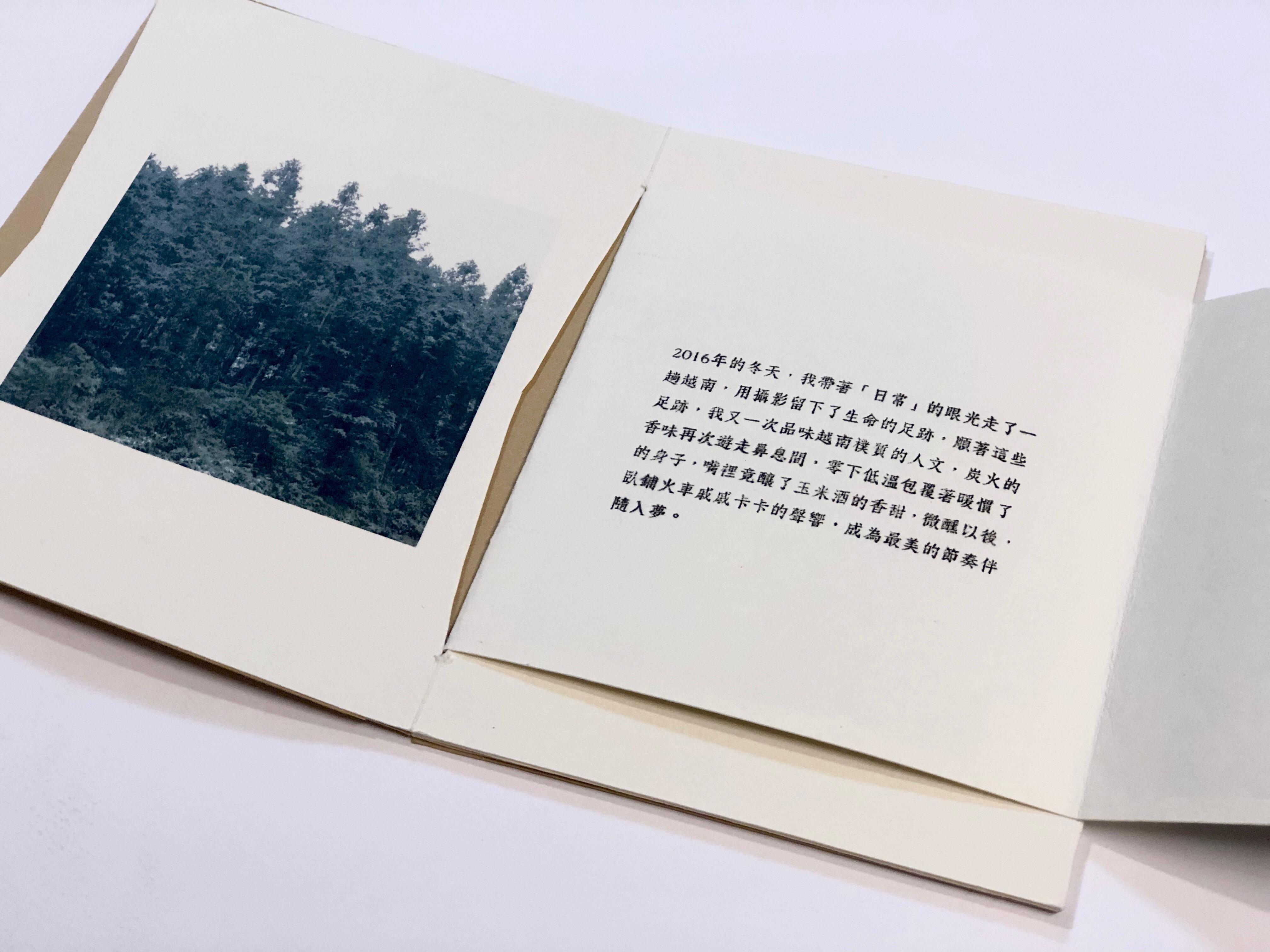 11-1越南雪景