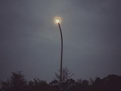 light03.jpeg