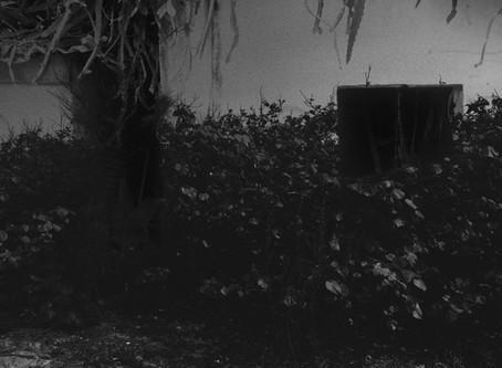 《故鄉的記憶》之三: 【童年】有鬼,趕快跑