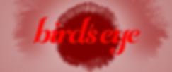 birdsEye_VFX_008_V7_00316.png