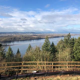 Photo A Landscape View on property backy
