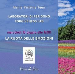 Laboratori di Per Dono, Forgiveness Lab