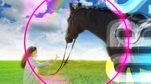 Comencen les extraescolars d'equitació/Comienzan las extraescolares de equitación