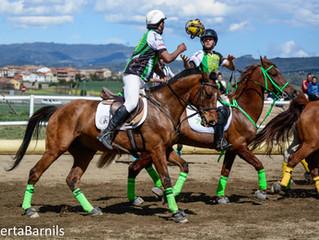 Oportunidad de descubrir el Horseball/ Oportunitat de descobrir el Horseball