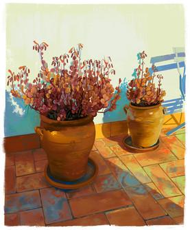 Seville Pots - Digital Paining