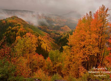Colorado Fall Magic