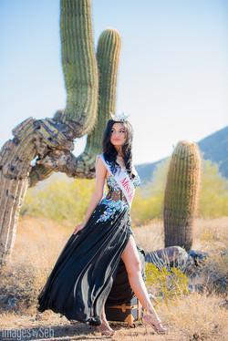 Miss Mesa 2017