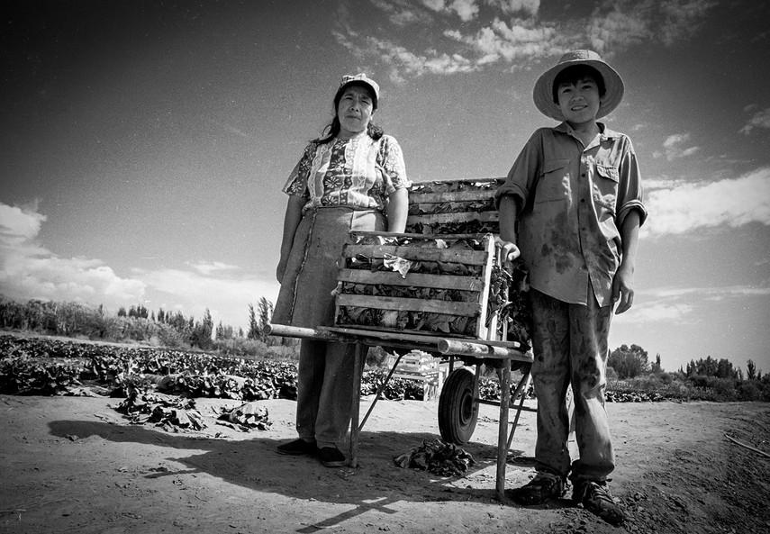 Agricultoremigrante-15.jpg