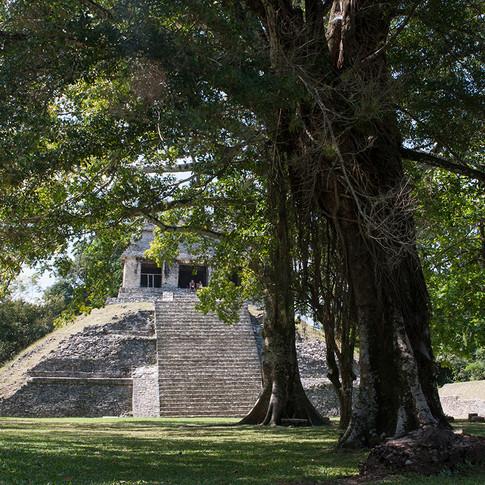 Mexico-014.jpg