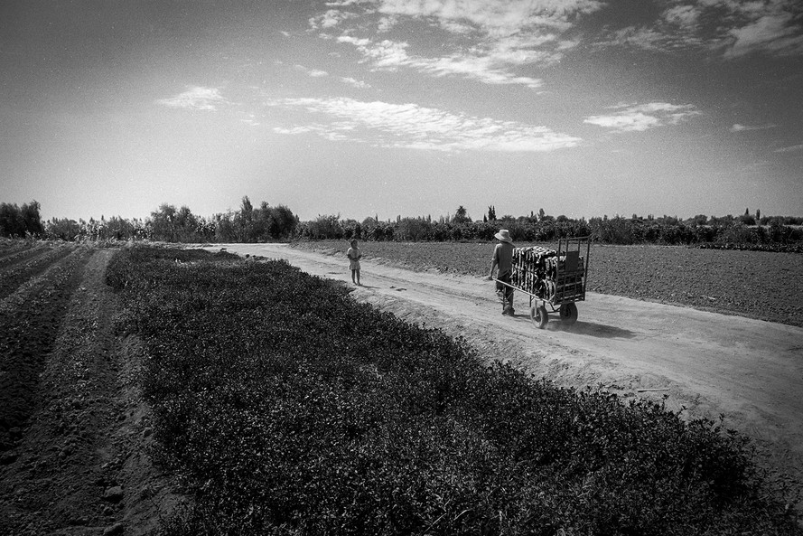 Agricultoremigrante-16.jpg