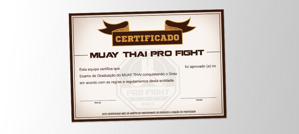 portfolio-certificado-pro-fight-agencia-monvie-porto-alegre