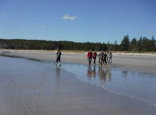 Students on the sandy beach