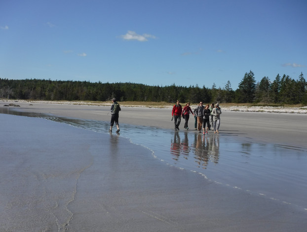 Students on the sandy beach