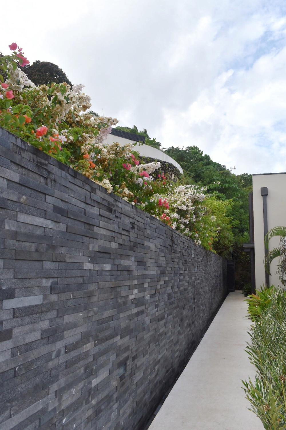terraces vanuatu
