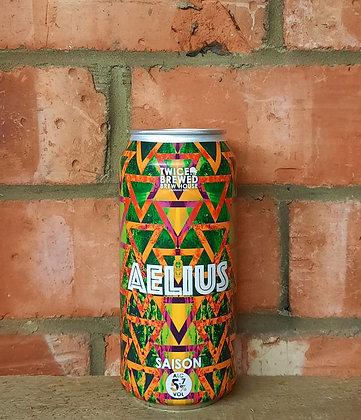 Aelius – Twice Brewed – 5.7% Saison