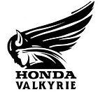 valkyrie logo.jpg