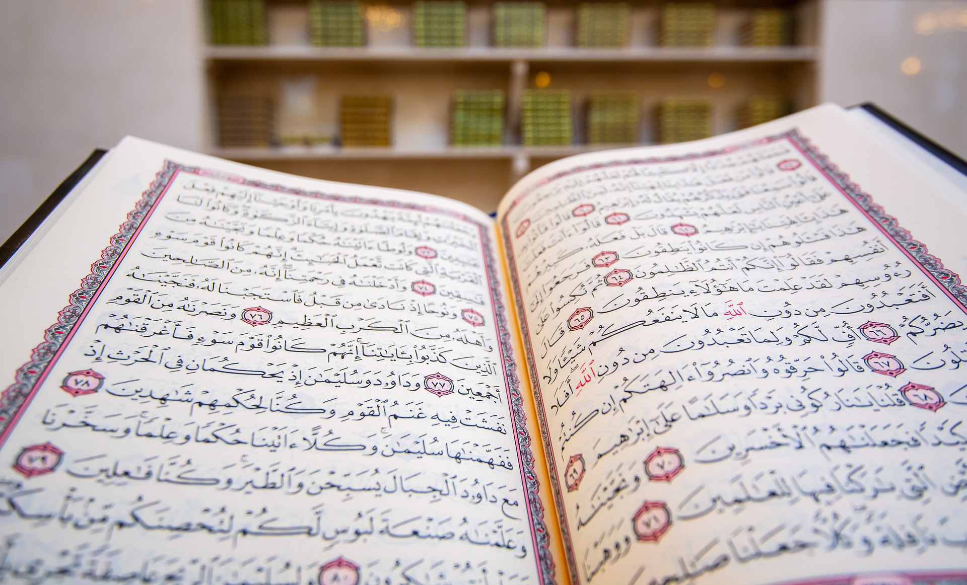 Gratis Probestunde Quran