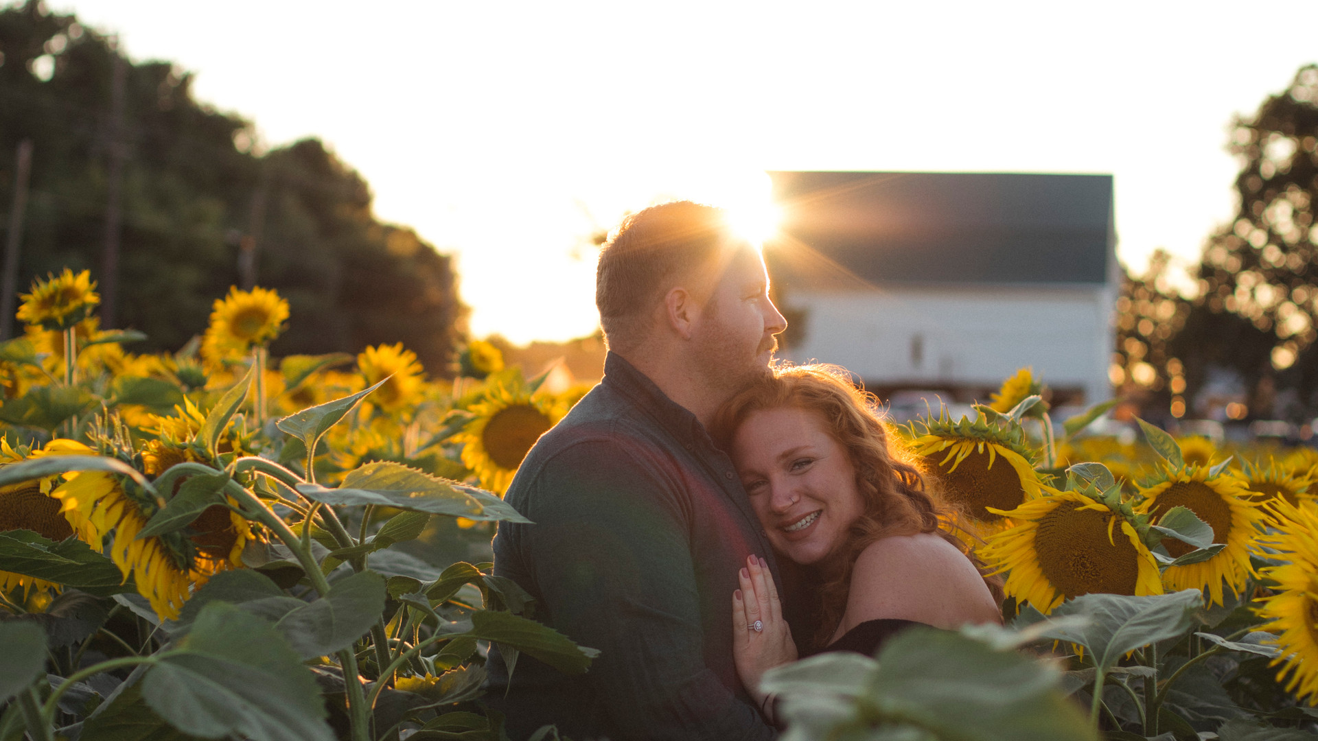 Sunflowers-Maternity-Photos-Harford County-Maryland-Photographer-Jennifer Schaefer Photography