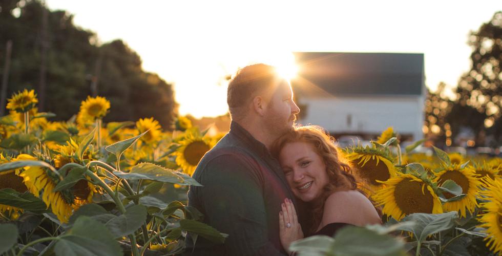 Sunflowers-Maternity-Photos-Harford County-Maryland-Photographer-Jennifer Schaefer Photography
