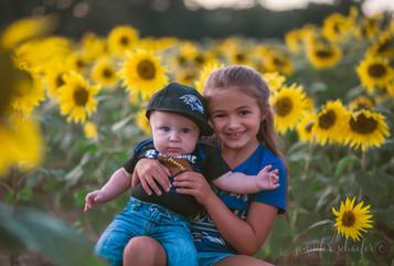 children's sunflower photography-sunflow