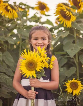 sunflowers-sunflower minis-harford county sunflowers-maryland sunflowers-Jennifer Schaefer Photography